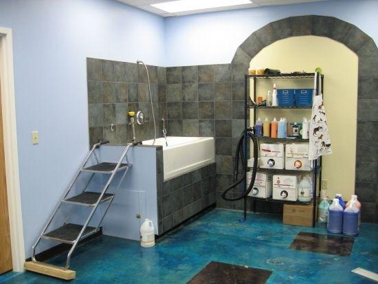 宠物店店铺装修之洗浴区