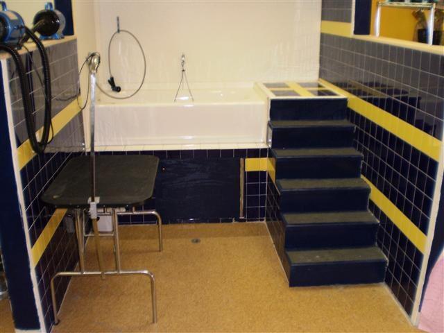 宠物店店铺装修之洗浴区(国外店铺图片分享)
