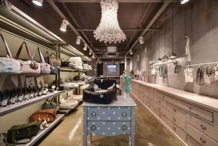 韩国工作室设计的宠物店:不同面积,同样精致